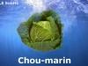 choumarin