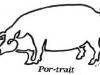porc-trait