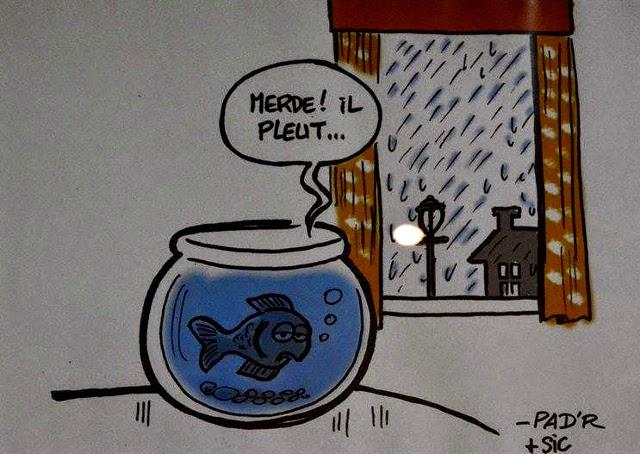 pluiepoisson
