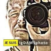 lgdamsphoto (07.03.16)
