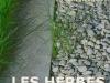 herbesfolles
