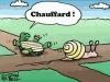 tortue_escargot_chauffard