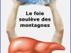monfoie